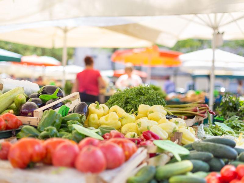 Mercado mensual para 1 familia de la comunidad